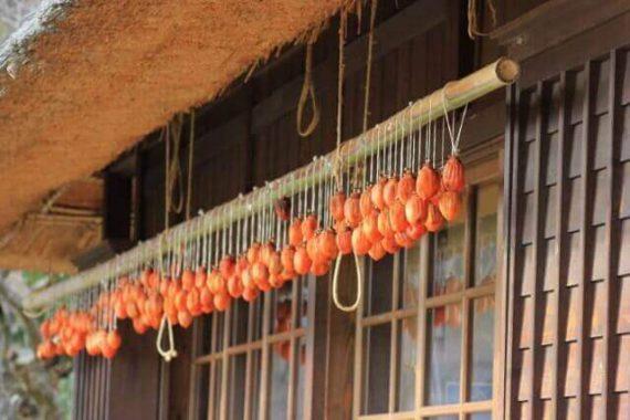 干し柿の知られざる健康効果とは