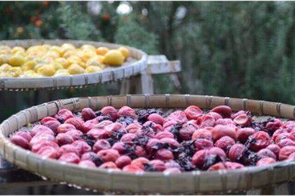 干し梅のドライフルーツ